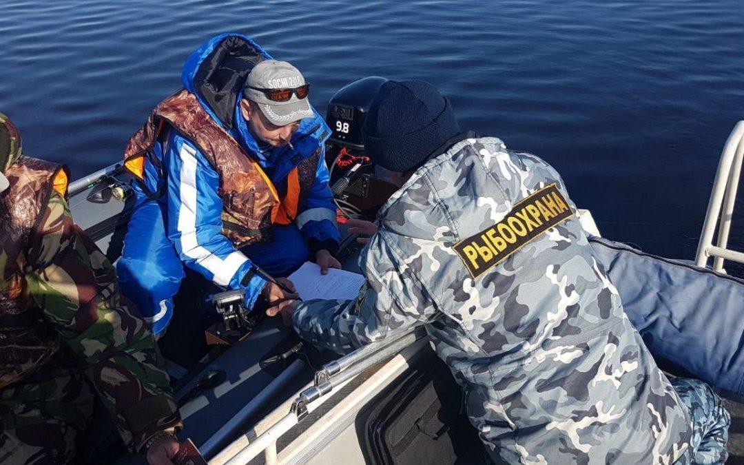 Права и обязанности подводного охотника
